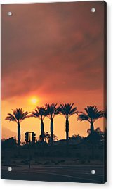 Palms On Fire Acrylic Print by Laurie Search