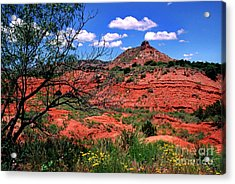 Palo Duro Canyon State Park Acrylic Print by Thomas R Fletcher