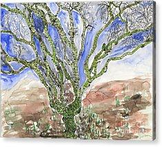 Palo Verde Acrylic Print by Mukta Gupta