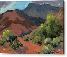 Palo Verdes In Bloom Acrylic Print
