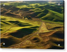 Palouse Homestead Acrylic Print by Ryan Manuel