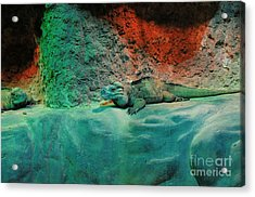 Pals Acrylic Print by Kathleen Struckle