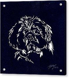 Pampered Dog Acrylic Print by Alfred Ng