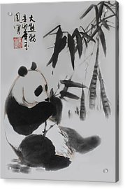 Panda And Bamboo Acrylic Print