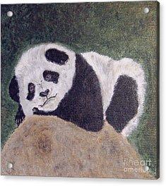 Panda Bear Sleepy Baby Cub Acrylic Print by Ella Kaye Dickey