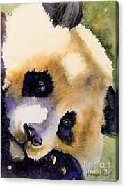 Acrylic Print featuring the painting Panda Cub by Bonnie Rinier