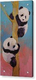 Panda Fun Acrylic Print by Michael Creese