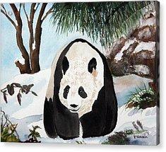 Panda On Ice Acrylic Print by Patricia Novack