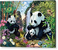 Panda Valley Acrylic Print by Steve Read