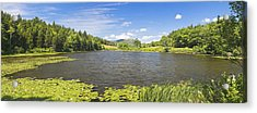 panorama of Long Pond In Summer Acadia National Park Photograph Acrylic Print by Keith Webber Jr