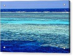 Panorama Reef Acrylic Print