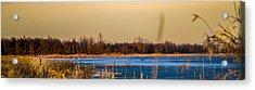 Panoramic Goose Home Acrylic Print by Bruno Santos