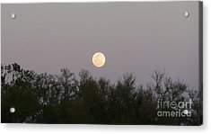 Panoramic New Orleans Moon Rising Acrylic Print by Joseph Baril