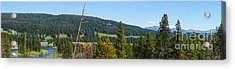 Panoramic Yellowstone Landscape Acrylic Print
