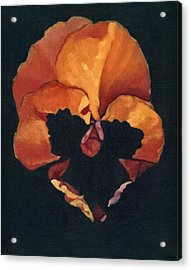 Acrylic Print featuring the painting Pansy No.6 by Katherine Miller