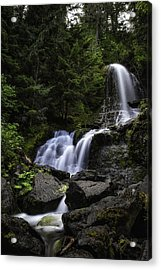 Panther Falls Acrylic Print by James Heckt