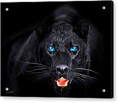 Panther Acrylic Print