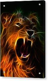 Panthera Leo Acrylic Print by Taylan Apukovska