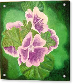 Panzies Acrylic Print