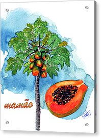 Papaia Acrylic Print