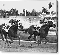 Papal Power Horse Racing Vintage Acrylic Print by Retro Images Archive