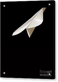 Paper Airplane Acrylic Print by Edward Fielding