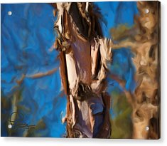 Acrylic Print featuring the photograph Paper Bark Birch by Ludwig Keck