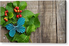 Paper Butterfly Acrylic Print by Aged Pixel