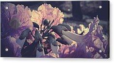 Paper Flowers - Purple Acrylic Print