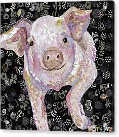Paper Pig Acrylic Print by Beth Watkins