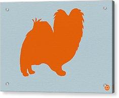 Papillion Orange Acrylic Print by Naxart Studio