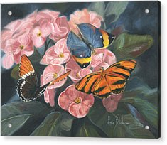 Papillons Acrylic Print by Lucie Bilodeau