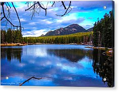 Acrylic Print featuring the photograph Paradise 2 by Shannon Harrington