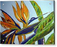 Paradise Bird Flower Acrylic Print