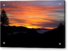 Acrylic Print featuring the photograph Paradise by David Stine
