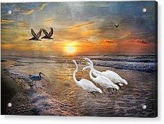 Paradise Dreamland  Acrylic Print by Betsy C Knapp