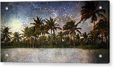 Paradise Found Acrylic Print by Ellen Heaverlo