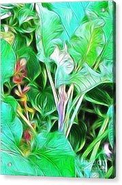 Paradise Acrylic Print by Kathie McCurdy