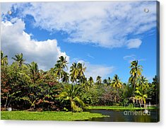 Acrylic Print featuring the photograph Paradise Lagoon by David Lawson