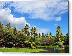 Paradise Lagoon Acrylic Print