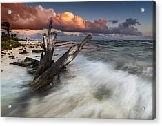 Acrylic Print featuring the photograph Paradise Lost by Mihai Andritoiu