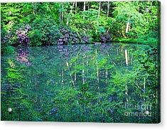 Paradise Acrylic Print by Melissa Petrey