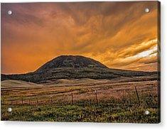 Paradise On Elk Mountain Meadows Acrylic Print
