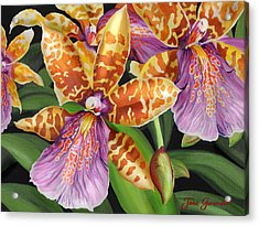 Acrylic Print featuring the painting Paradise Orchid by Jane Girardot