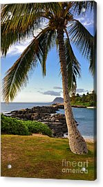 Acrylic Print featuring the photograph Paradise Palm by Gina Savage