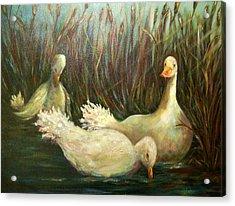 Paradise Pond,ducks  Acrylic Print