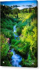 Paradise Stream Acrylic Print by Inge Johnsson