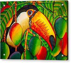 Paradise Toucan Acrylic Print