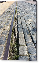 Paralell Lines Acrylic Print