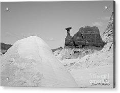 Paria Utah V Acrylic Print by Dave Gordon